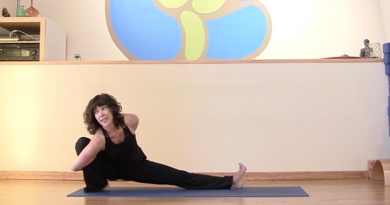 Vinyasa Flow Yoga Videos | Yogis Anonymous